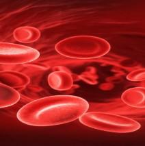 Kan Gruplarının Gizemi